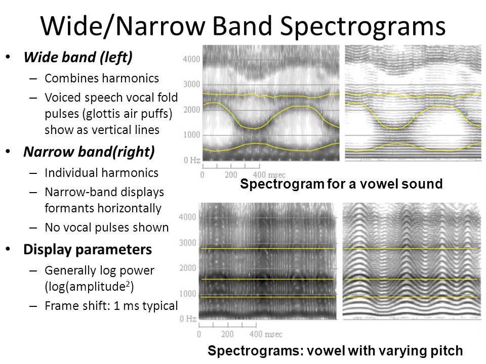 Wide/Narrow Band Spectrograms - ppt download