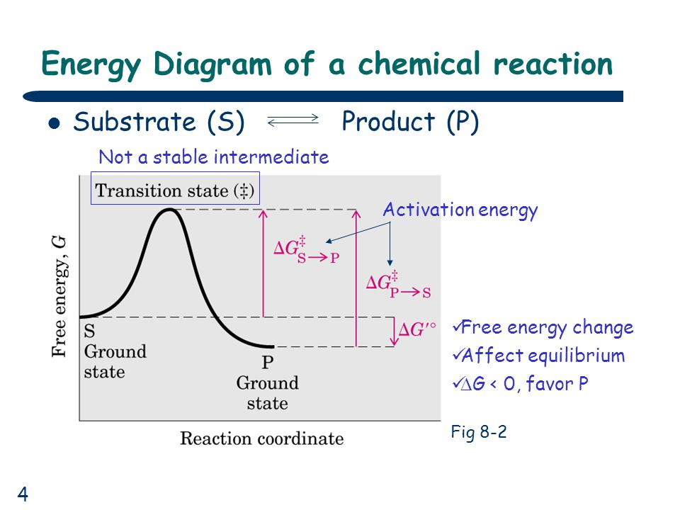an analysis of an enzymatic reaction 1 candace s randolph misep cohort 2 chemistry 512 enzyme catalysis lab report pre-lab questions: 1 write a balanced chemical equation with state symbols for the reaction.