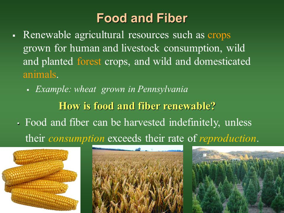 How is food and fiber renewable