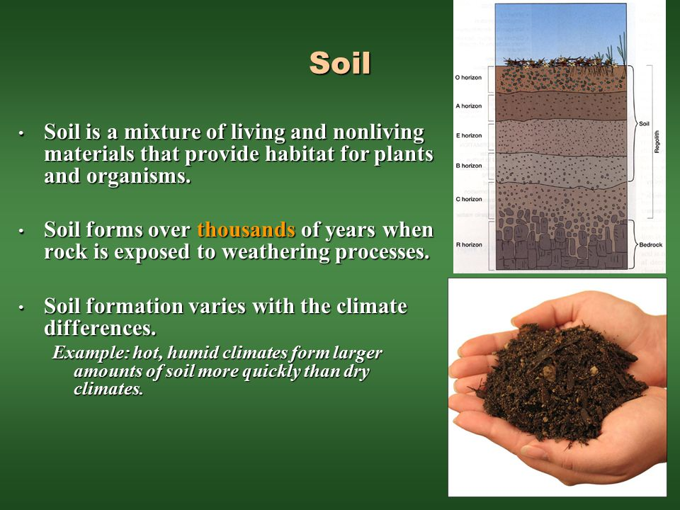 Soil Soil is a mixture of living and nonliving materials that provide habitat for plants and organisms.