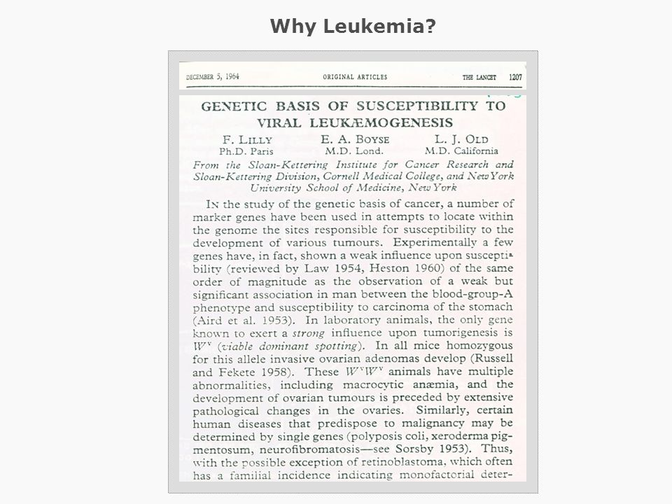 Why Leukemia