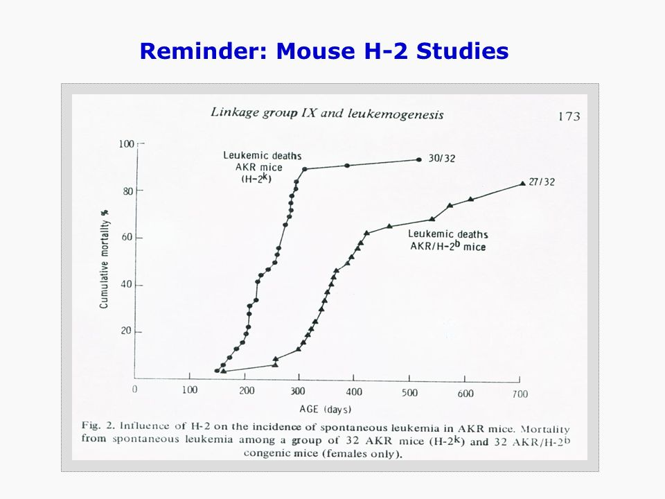 Reminder: Mouse H-2 Studies