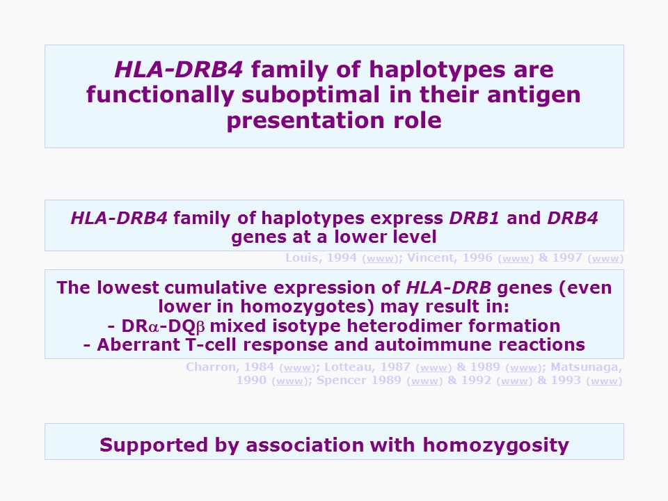HLA-DRB4 family of haplotypes are functionally suboptimal in their antigen presentation role