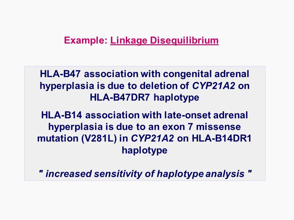 Example: Linkage Disequilibrium