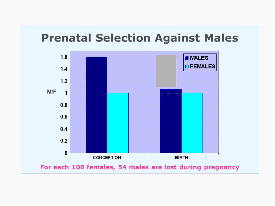 Prenatal Selection Against Males