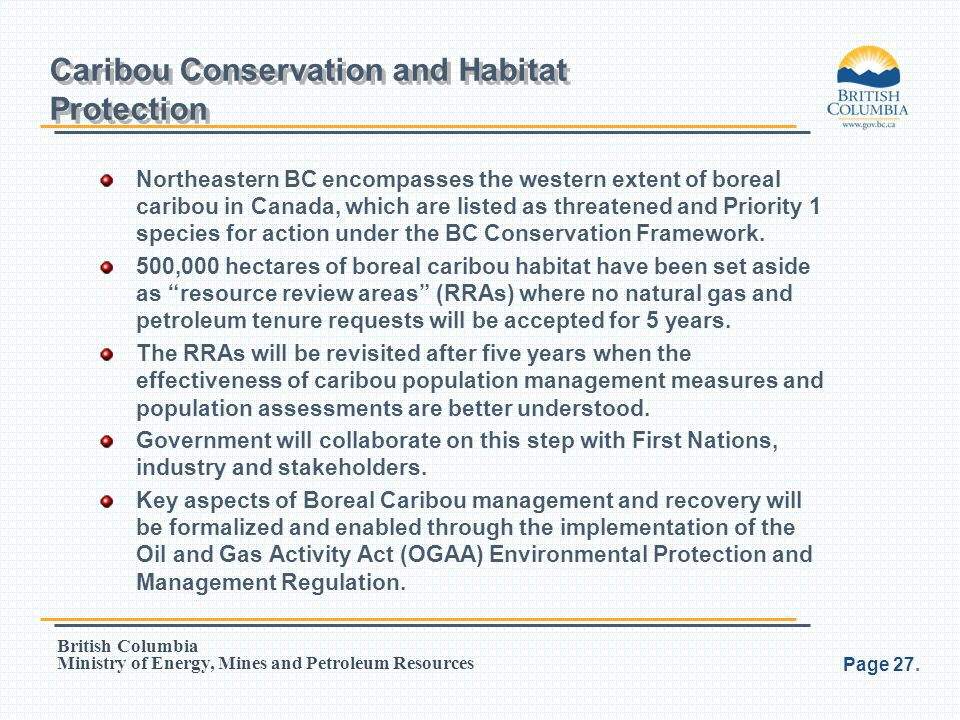 Caribou Conservation and Habitat Protection
