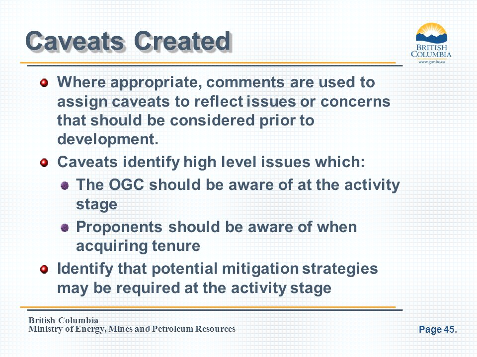 Caveats Created Where appropriate, comments are used to assign caveats to reflect issues or concerns that should be considered prior to development.