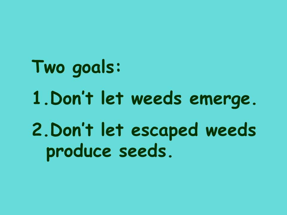Two goals: Don't let weeds emerge. Don't let escaped weeds produce seeds.