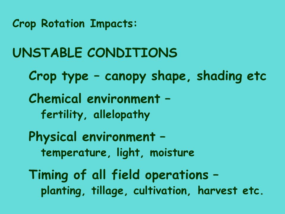 Crop type – canopy shape, shading etc