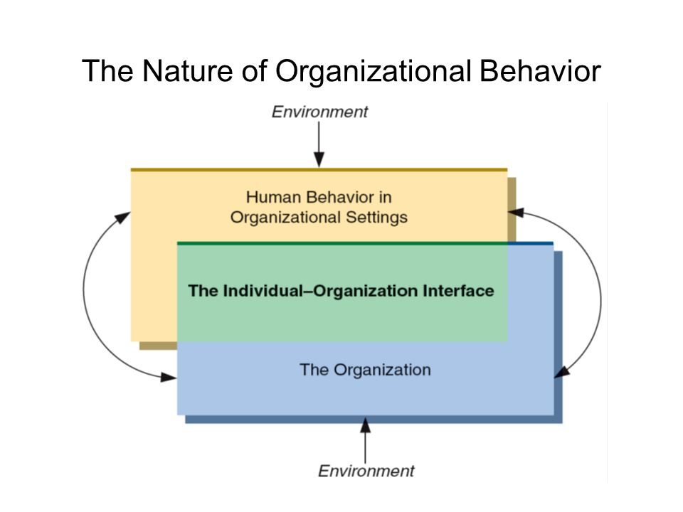 importance of studying organizational behavior Understand the importance of studying organizational behavior   understanding behavior: systematic study, evidence-based management & intuition related study.