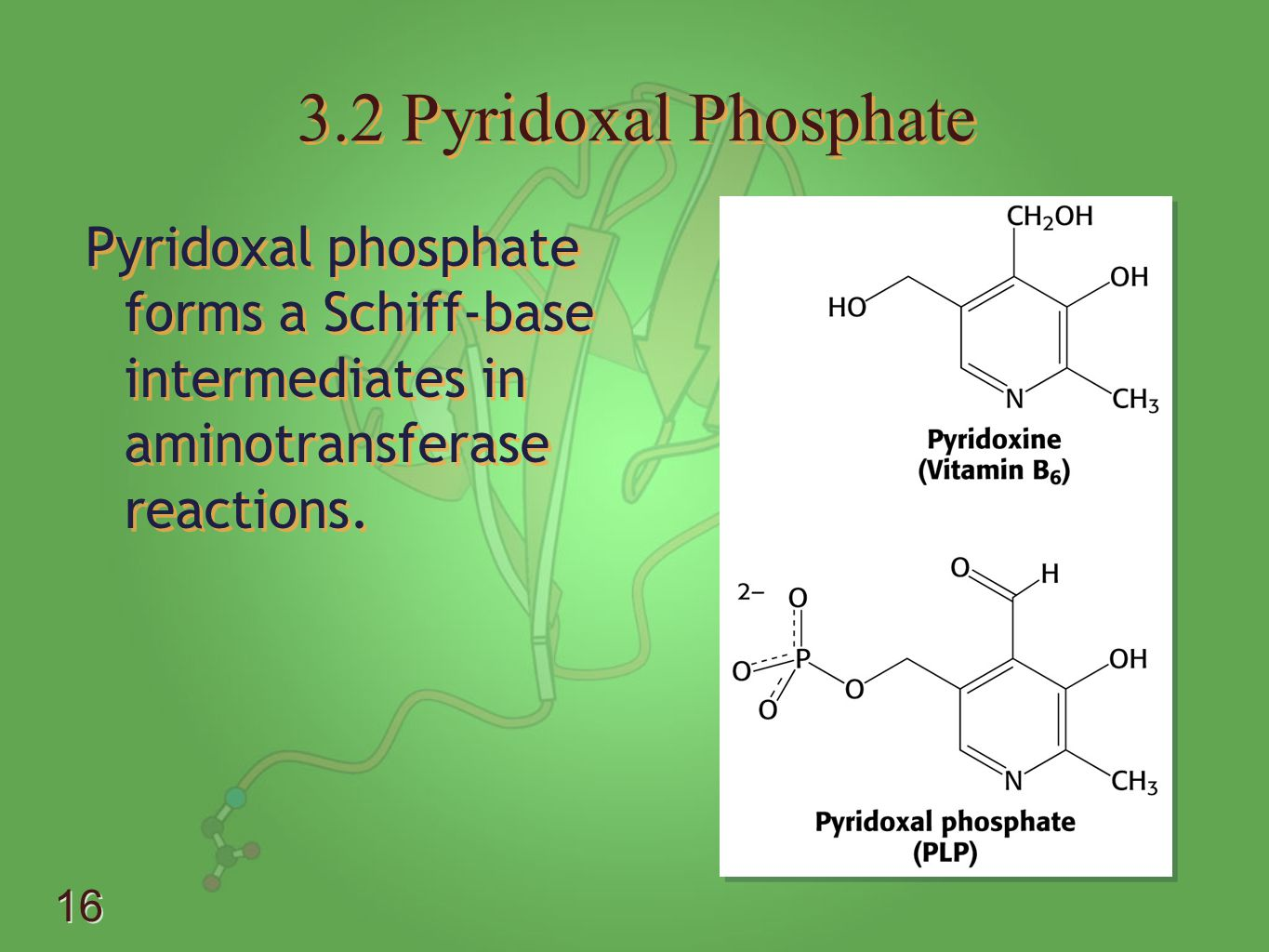 3.2 Pyridoxal Phosphate Pyridoxal phosphate forms a Schiff-base intermediates in aminotransferase reactions.