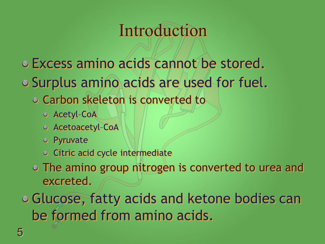 Introduction Excess amino acids cannot be stored.