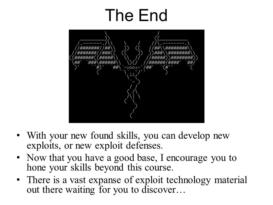 The End With your new found skills, you can develop new exploits, or new exploit defenses.