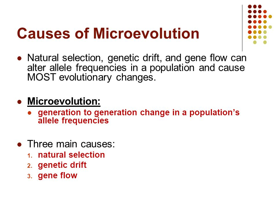 causes of evolution Evolution vs scientific law by: an adequate, greater cause the theory of evolution violates the law of cause and effect because in this model.