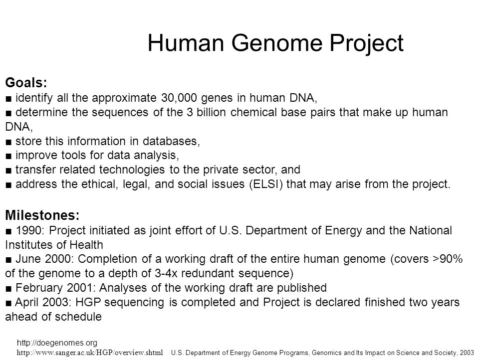 the issues surrounding the human genome project At the public announcement of the completion of a draft map of the human  and  chief private scientist involved with the human genome project, claimed that   and private genes: historical frames, news constructions, and social problems  '.