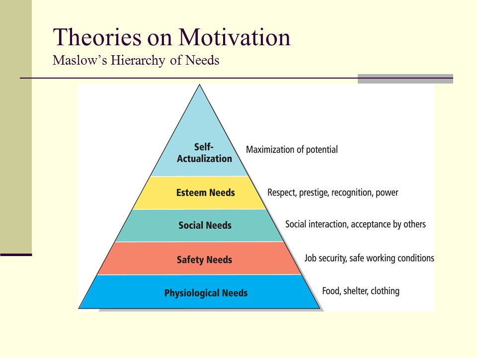 Theories on Motivation Maslow's Hierarchy of Needs