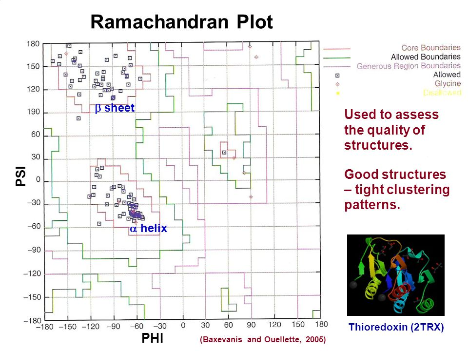 Ramachandran Plot Used to assess the quality of structures.