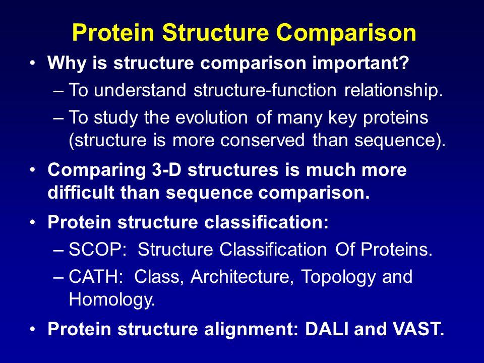 Protein Structure Comparison