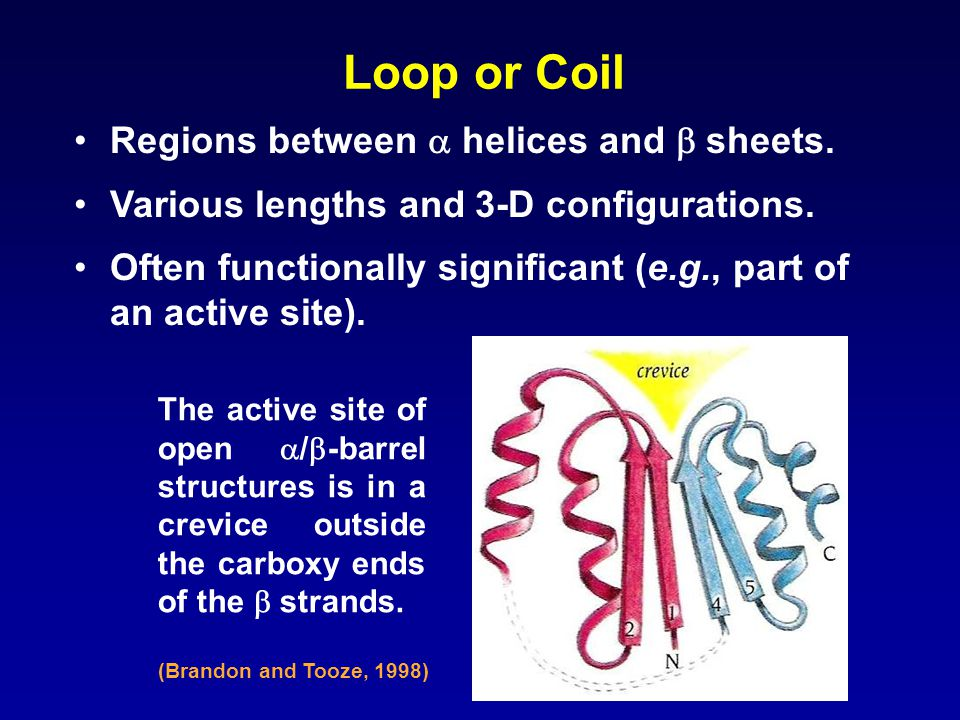 Loop or Coil Regions between  helices and  sheets.