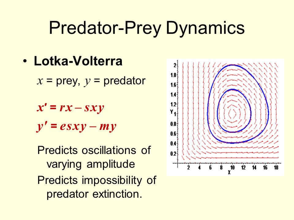 prey predator dynamics Evolutionary dynamics of predator—prey systems 559 then be written as a pair of differential equations xr x f (s,x) for i1,2 , (1) where f is the per capita.