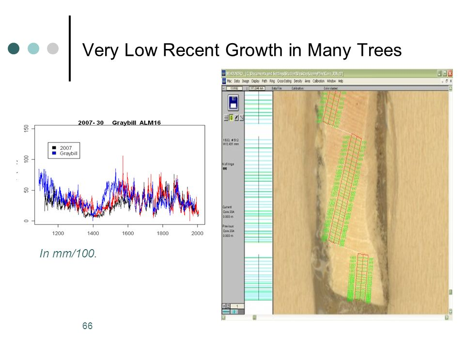 Very Low Recent Growth in Many Trees