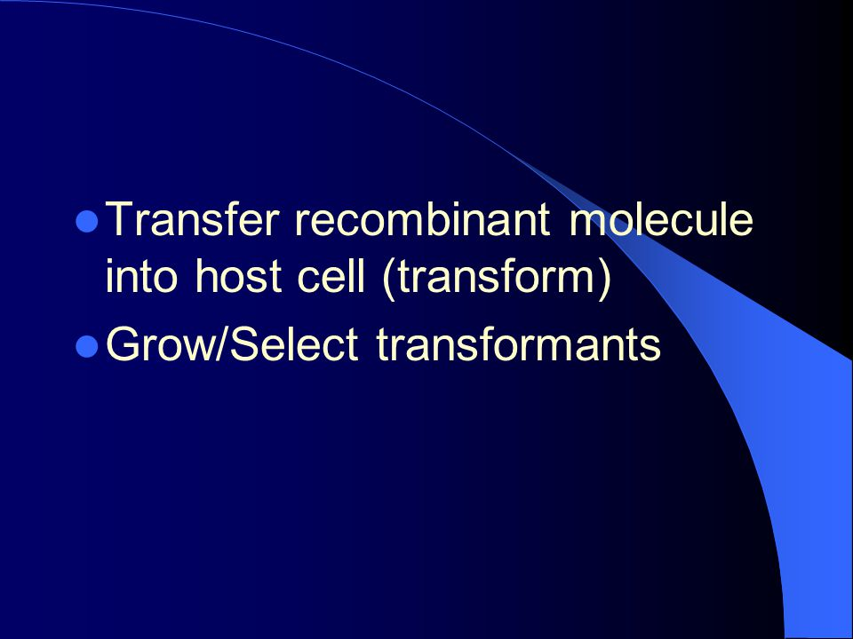 Transfer recombinant molecule into host cell (transform)