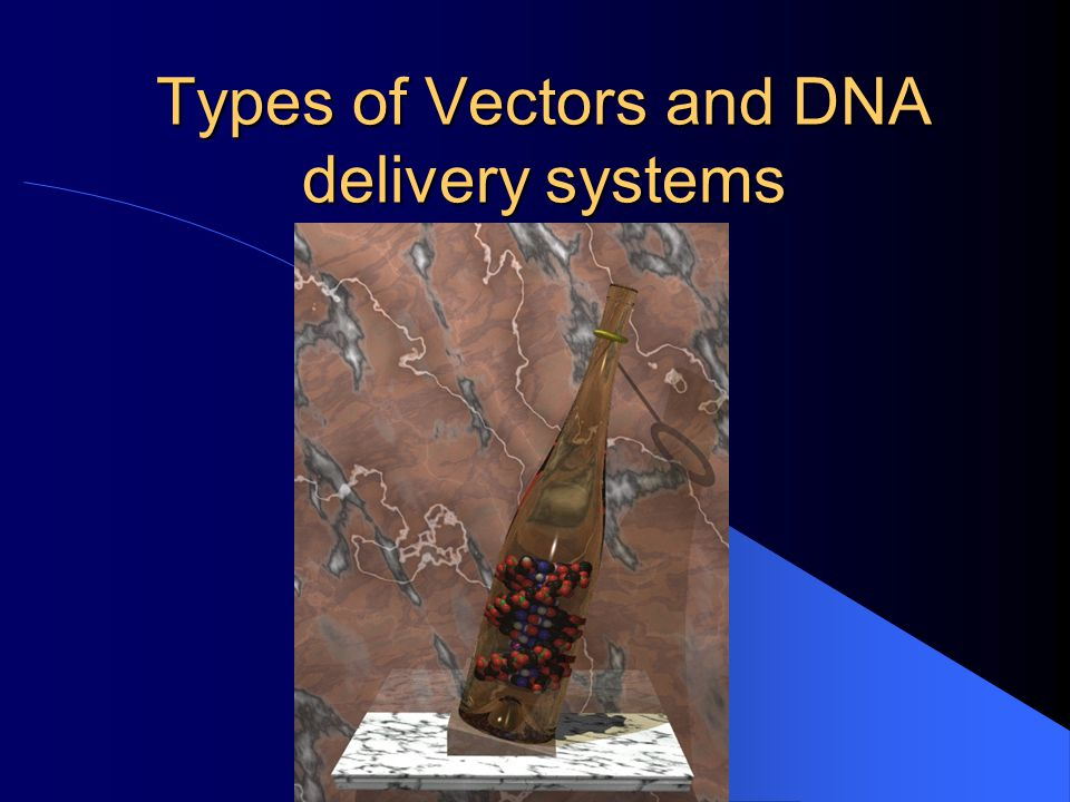Types of Vectors and DNA delivery systems