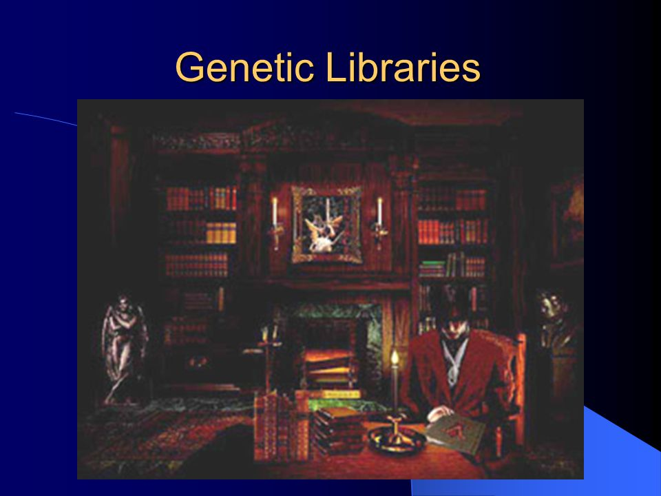 Genetic Libraries