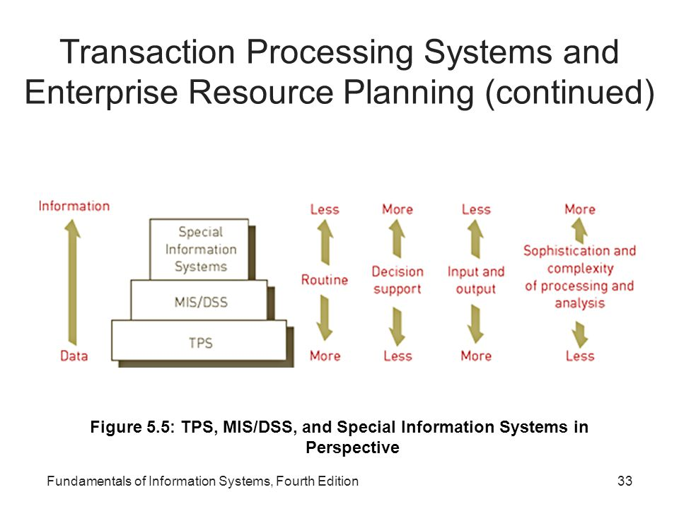 Transaction Processing Systems and Enterprise Resource Planning (continued)