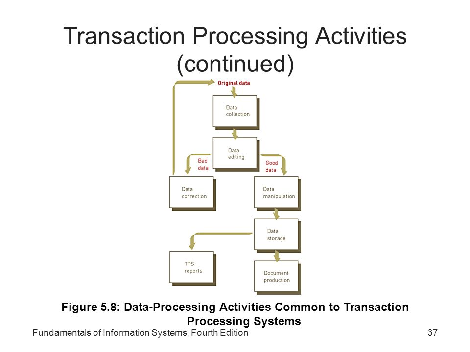 Transaction Processing Activities (continued)