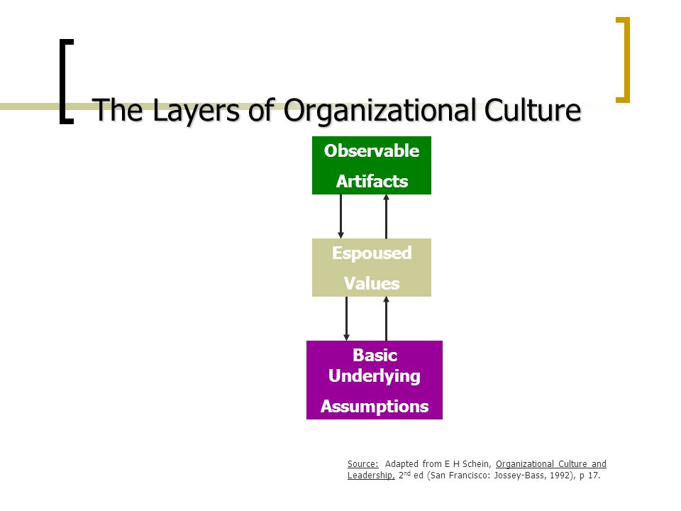 homeland organizational culture analysis observable artifacts espoused values and enacted values