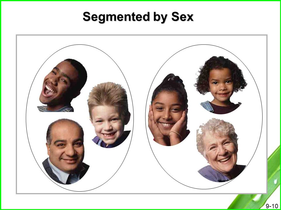 Segmented by Sex