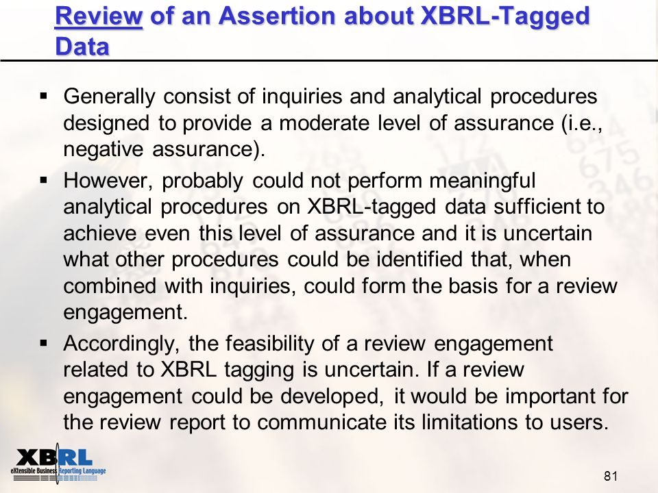 literature review of xbrl