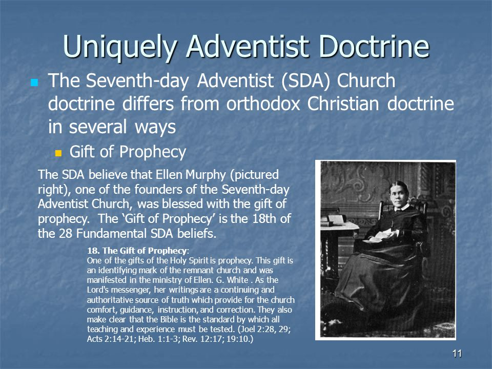 seventh day adventists believe pdf download