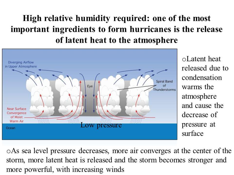 Storm Tropical Heat