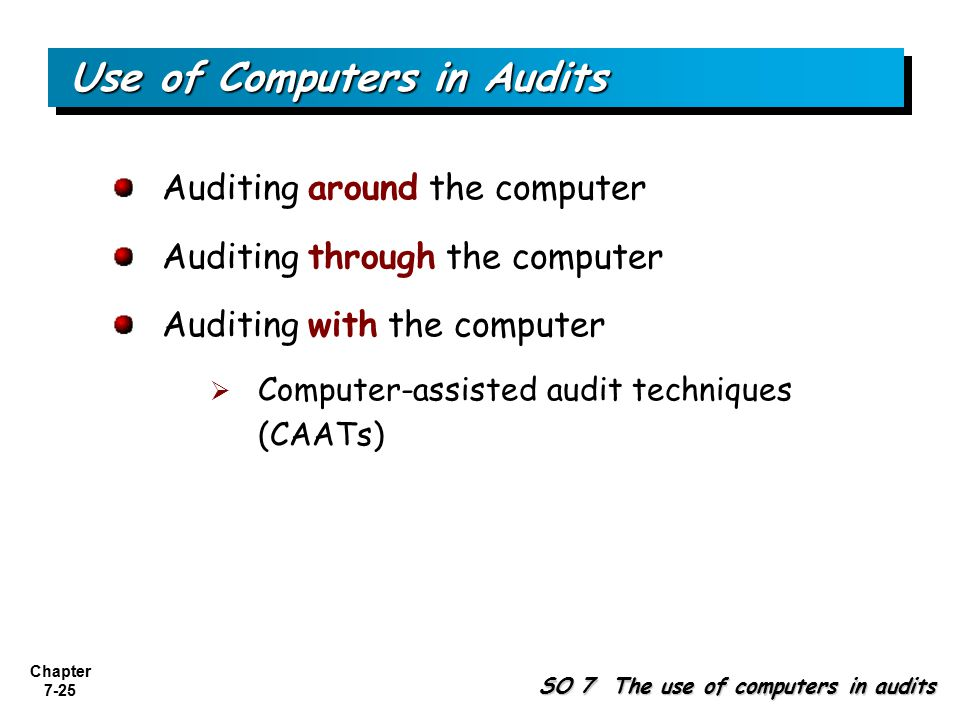 computer assisted audit techniques pdf