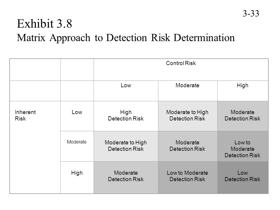 Exhibit 3.8 Matrix Approach to Detection Risk Determination