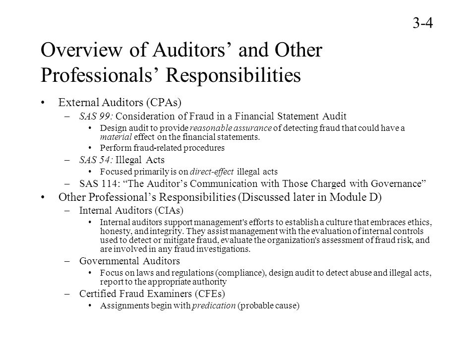 Overview of Auditors' and Other Professionals' Responsibilities