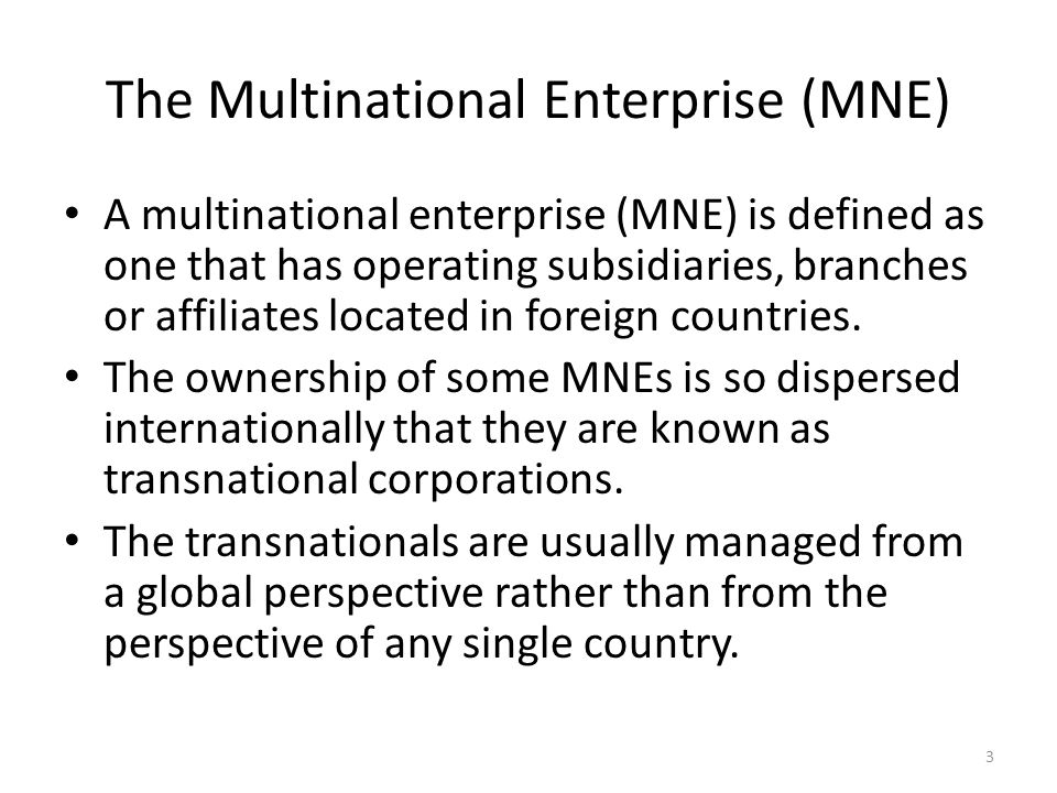 what is multinational enterprise pdf