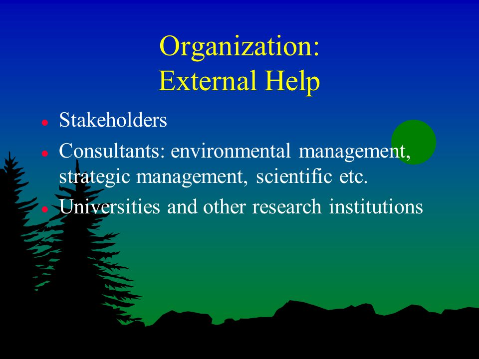 business organization and environment of nokia The business environment is a marketing term and refers to factors and forces that affect a firm's ability to build and maintain successful customer relationships.