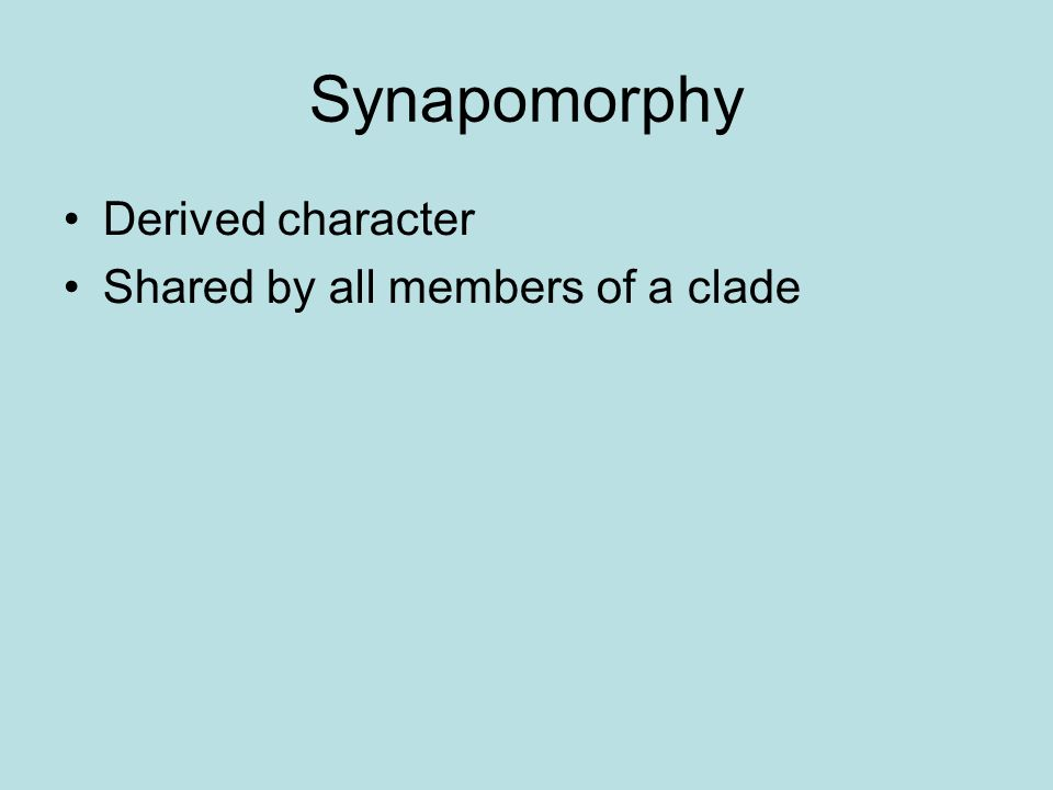 Synapomorphy Derived character Shared by all members of a clade