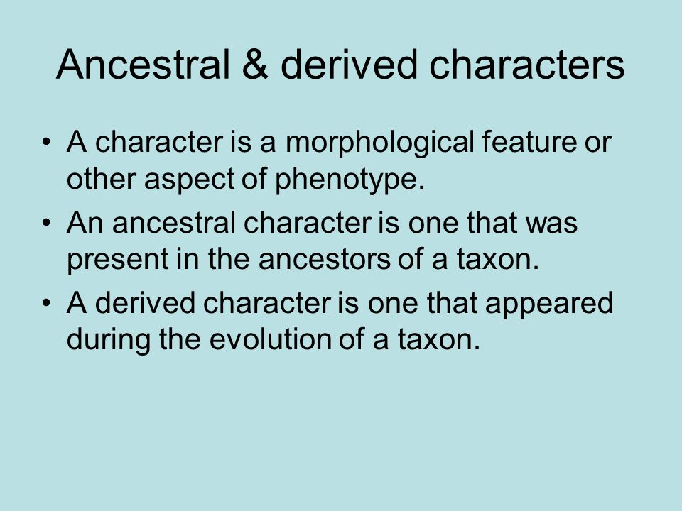 Ancestral & derived characters