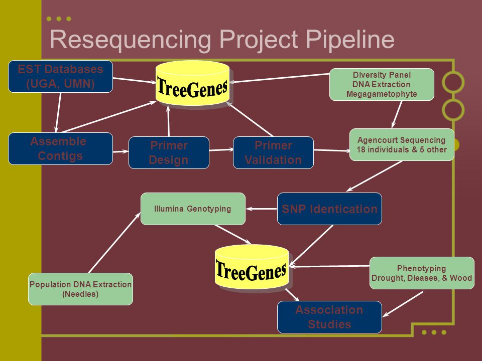 Bioinformatic techniques tools for snp analysis ppt video resequencing project pipeline ccuart Images