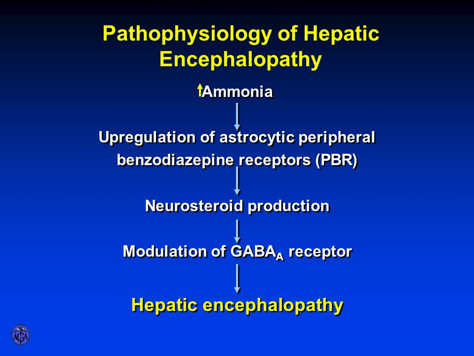 role of ammonia in hepatic encephalopathy Hepatic encephalopathy: pharmacological therapies targeting ammonia robert s rahimi, md, ms1 don c rockey, md2 1divisionof hepatology, departmentof internal medicine, annettec.