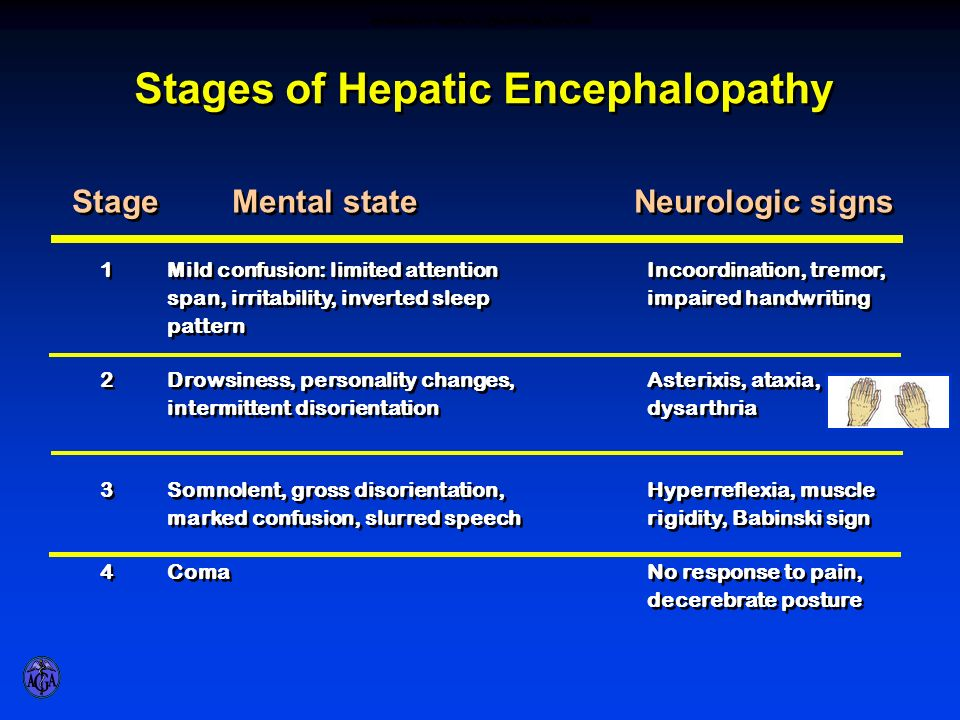 STAGES OF HEPATIC ENCEPHALOPATHY