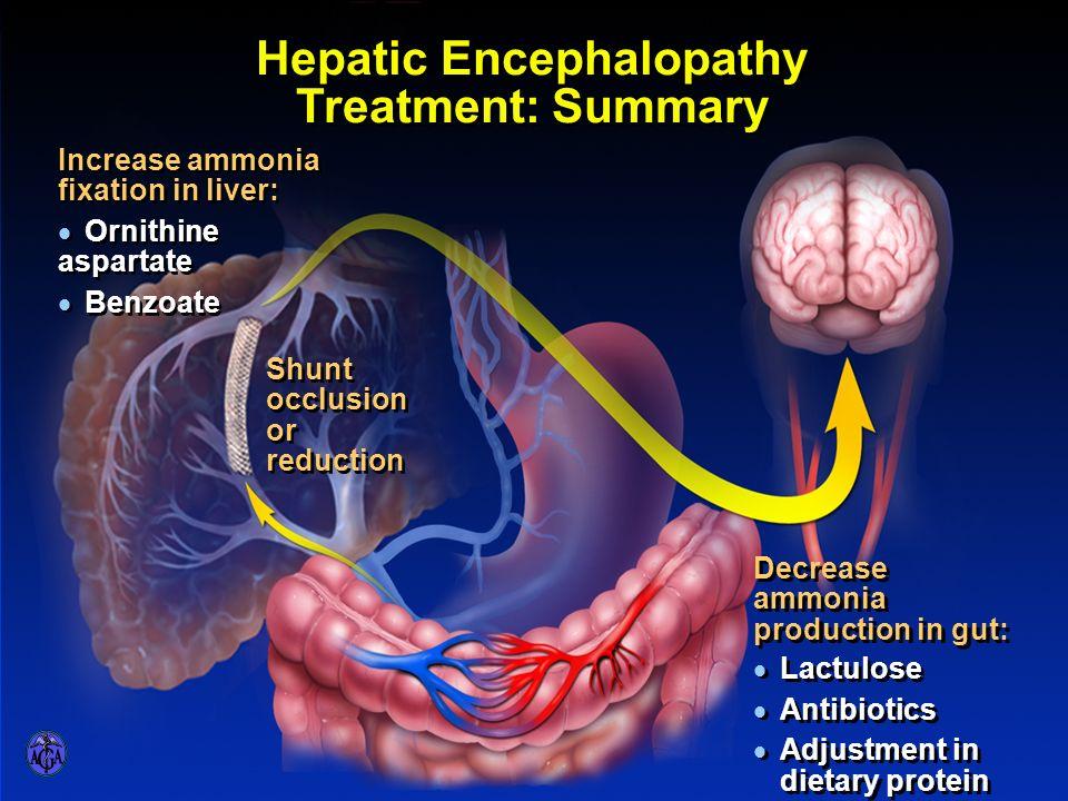 HEPATIC ENCEPHALOPATHY – TREATMENT SUMMARY