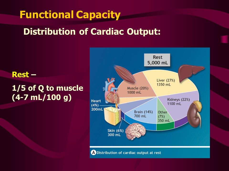 Functional Capacity Distribution of Cardiac Output: Rest –