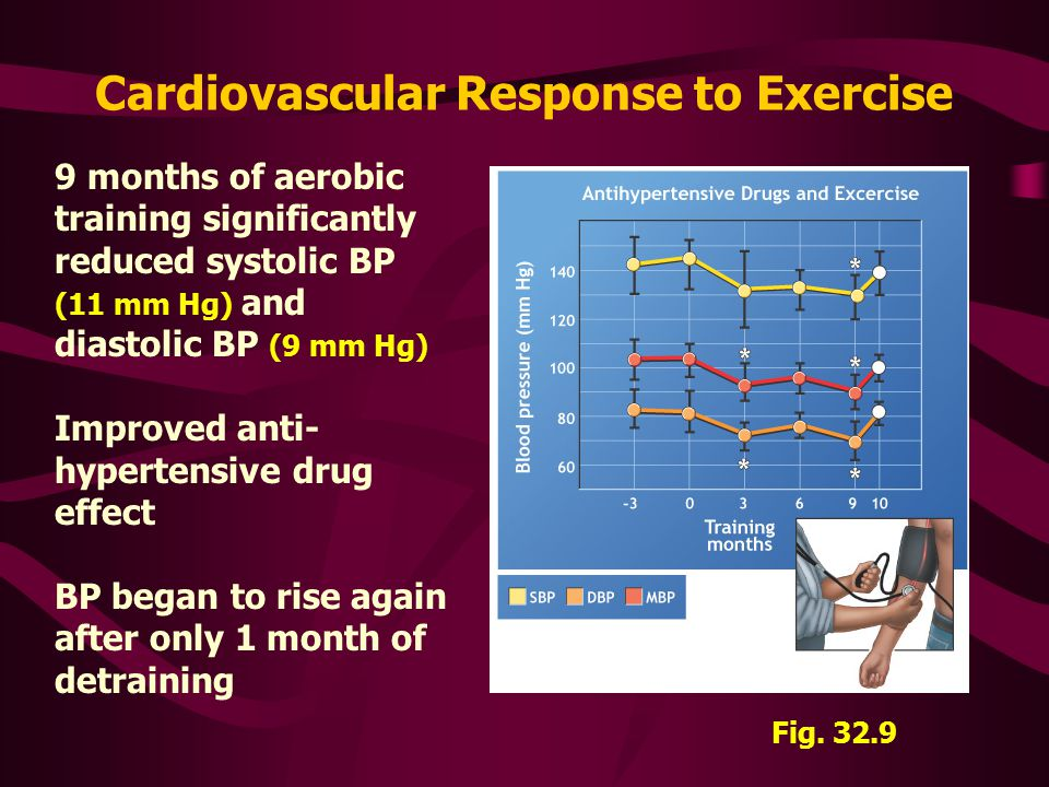 Cardiovascular Response to Exercise